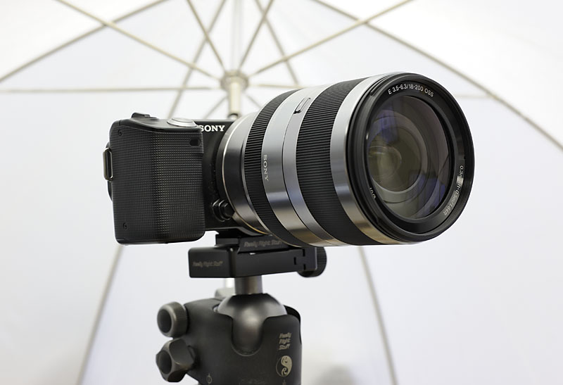 NEX-5 with 18-200mm OSS lens